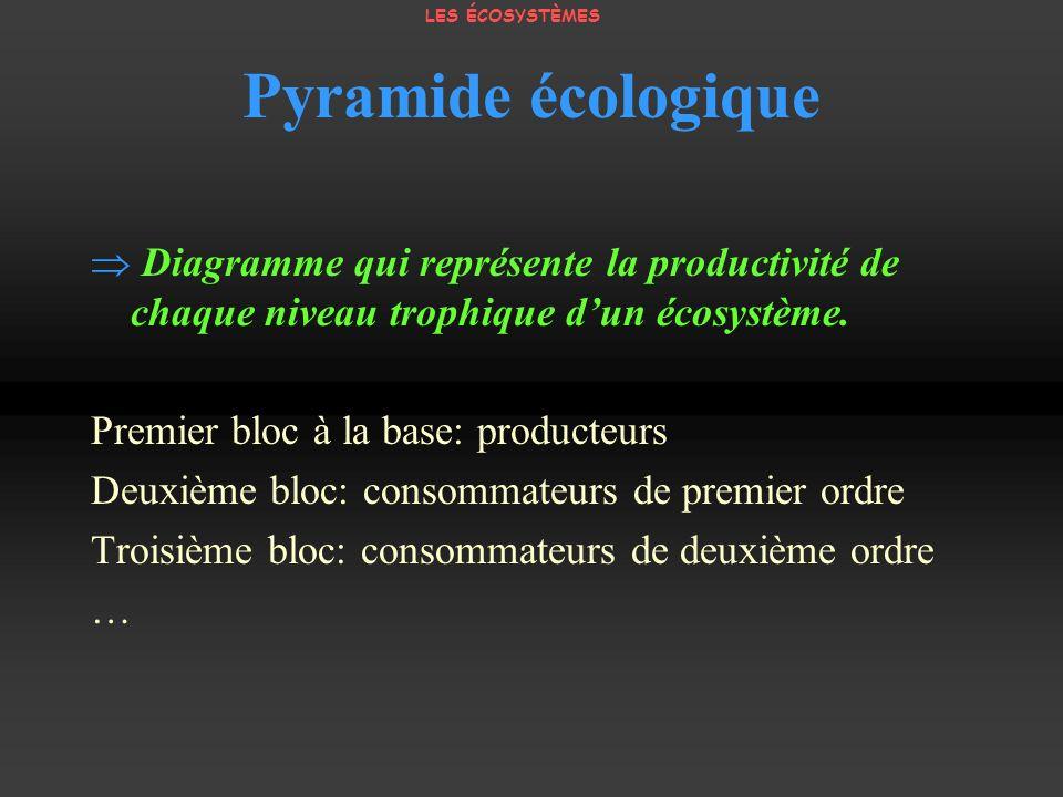 Pyramide écologique Diagramme qui représente la productivité de chaque niveau trophique dun écosystème. Premier bloc à la base: producteurs Deuxième b
