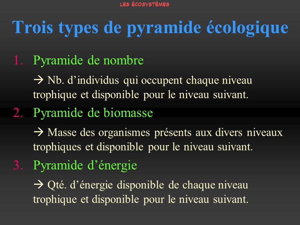 Trois types de pyramide écologique 1. Pyramide de nombre Nb. dindividus qui occupent chaque niveau trophique et disponible pour le niveau suivant. 2.