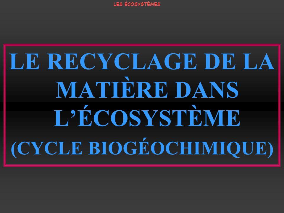 LE RECYCLAGE DE LA MATIÈRE DANS LÉCOSYSTÈME (CYCLE BIOGÉOCHIMIQUE) LES ÉCOSYSTÈMES