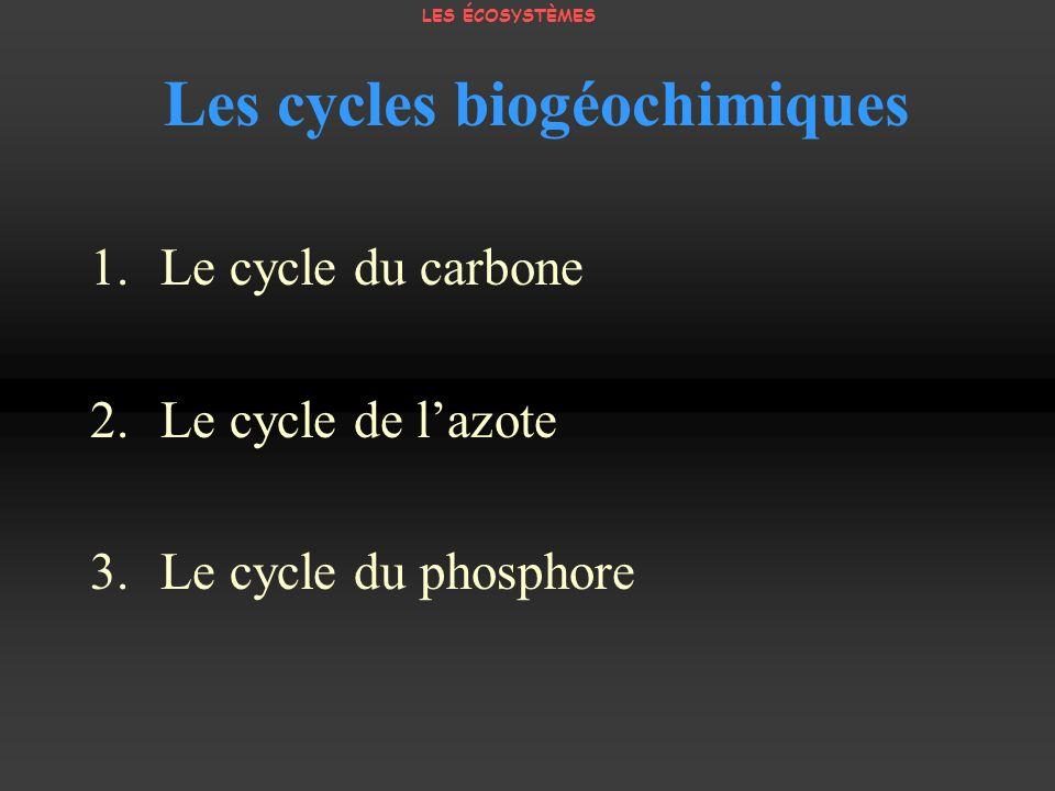 Les cycles biogéochimiques 1.Le cycle du carbone 2.Le cycle de lazote 3.Le cycle du phosphore LES ÉCOSYSTÈMES