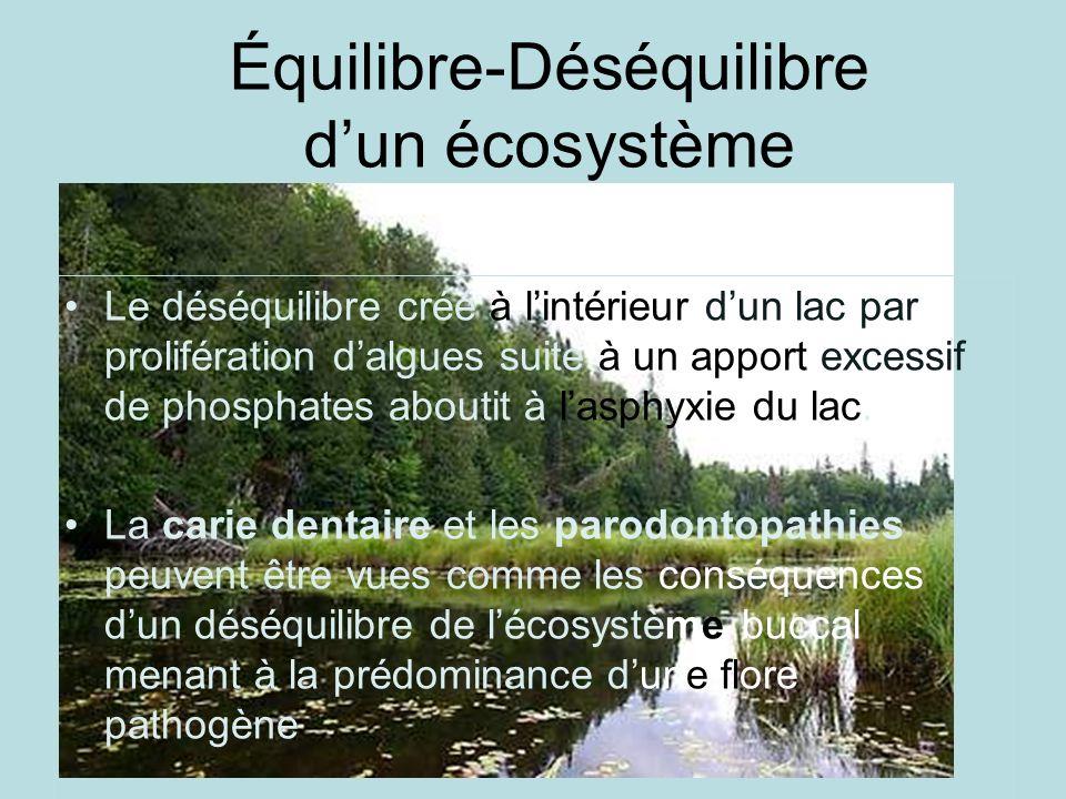 Équilibre-Déséquilibre dun écosystème Le déséquilibre créé à lintérieur dun lac par prolifération dalgues suite à un apport excessif de phosphates aboutit à lasphyxie du lac.