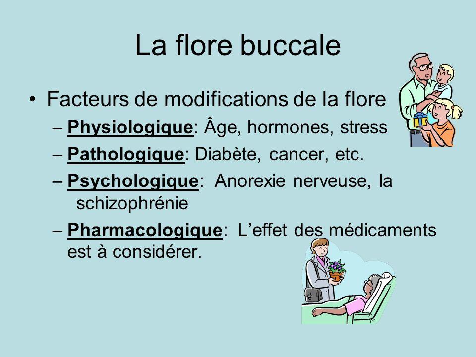 La flore buccale Facteurs de modifications de la flore –Physiologique: Âge, hormones, stress –Pathologique: Diabète, cancer, etc. –Psychologique: Anor