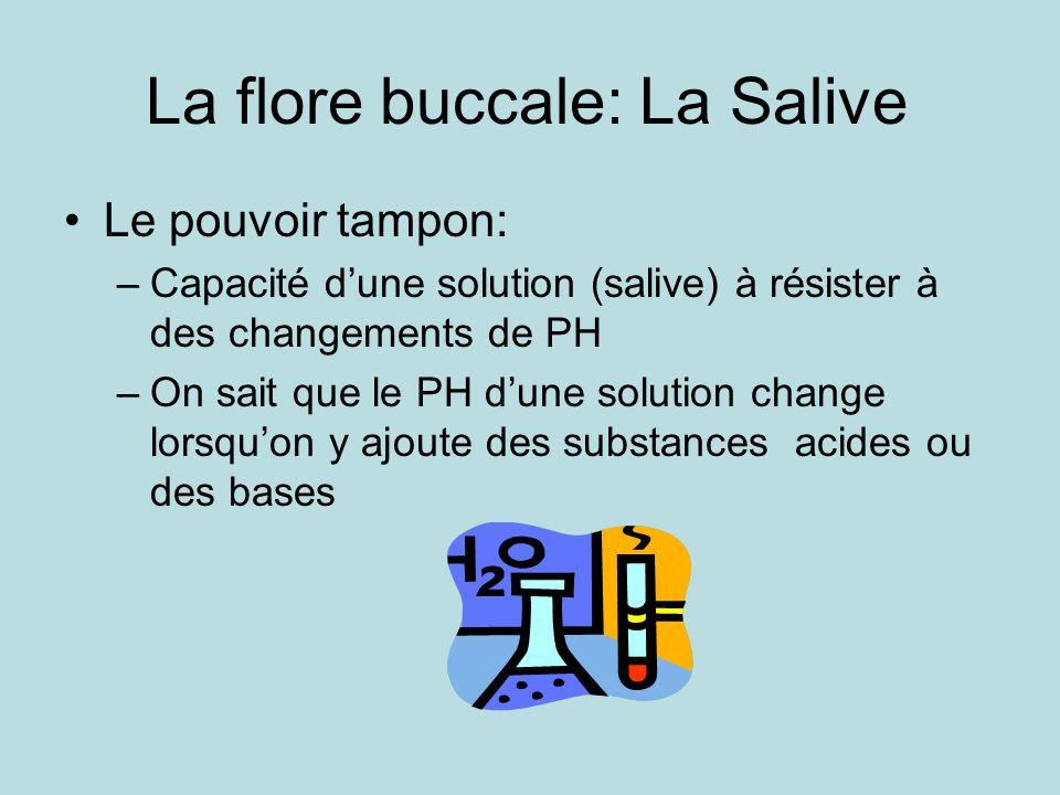 La flore buccale: La Salive Le pouvoir tampon: –Capacité dune solution (salive) à résister à des changements de PH –On sait que le PH dune solution change lorsquon y ajoute des substances acides ou des bases