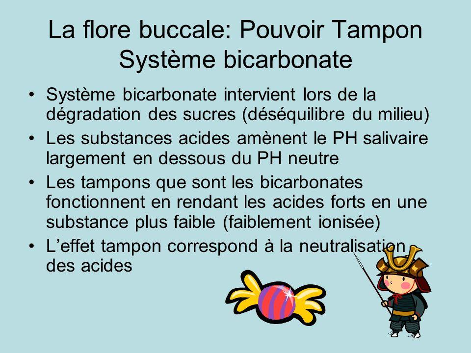 La flore buccale: Pouvoir Tampon Système bicarbonate Système bicarbonate intervient lors de la dégradation des sucres (déséquilibre du milieu) Les sub
