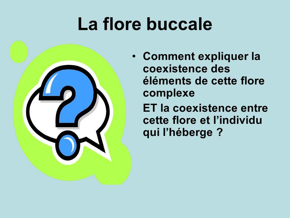 La flore buccale Comment expliquer la coexistence des éléments de cette flore complexe ET la coexistence entre cette flore et lindividu qui lhéberge ?