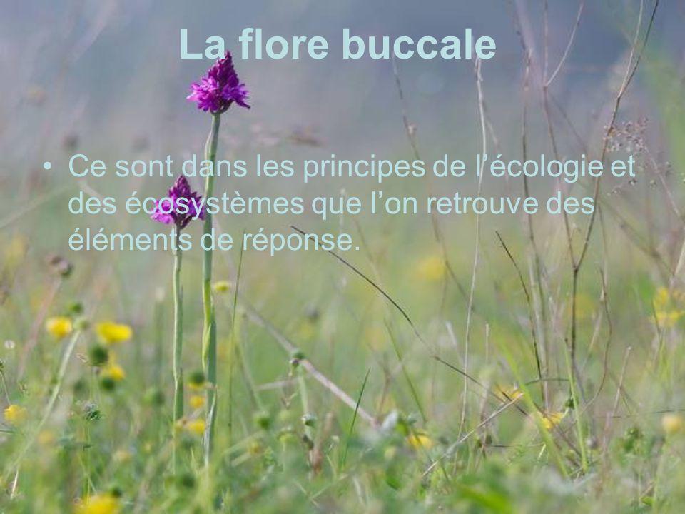 La flore buccale Ce sont dans les principes de lécologie et des écosystèmes que lon retrouve des éléments de réponse.