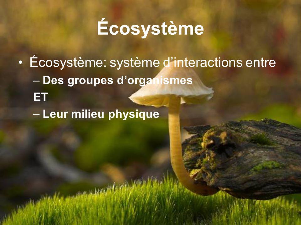 Écosystème Écosystème: système dinteractions entre –Des groupes dorganismes ET –Leur milieu physique
