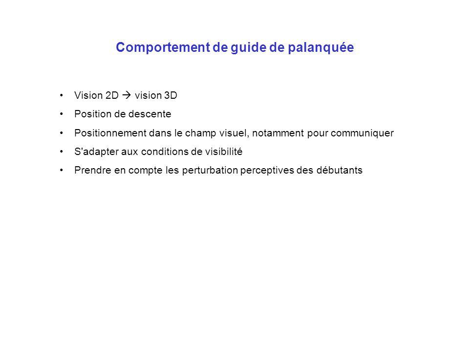 Comportement de guide de palanquée Vision 2D vision 3D Position de descente Positionnement dans le champ visuel, notamment pour communiquer S'adapter