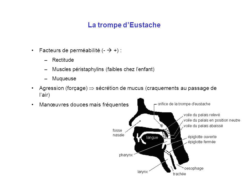 La trompe dEustache Facteurs de perméabilité (- +) : –Rectitude –Muscles péristaphylins (faibles chez lenfant) –Muqueuse Agression (forçage) sécrétion