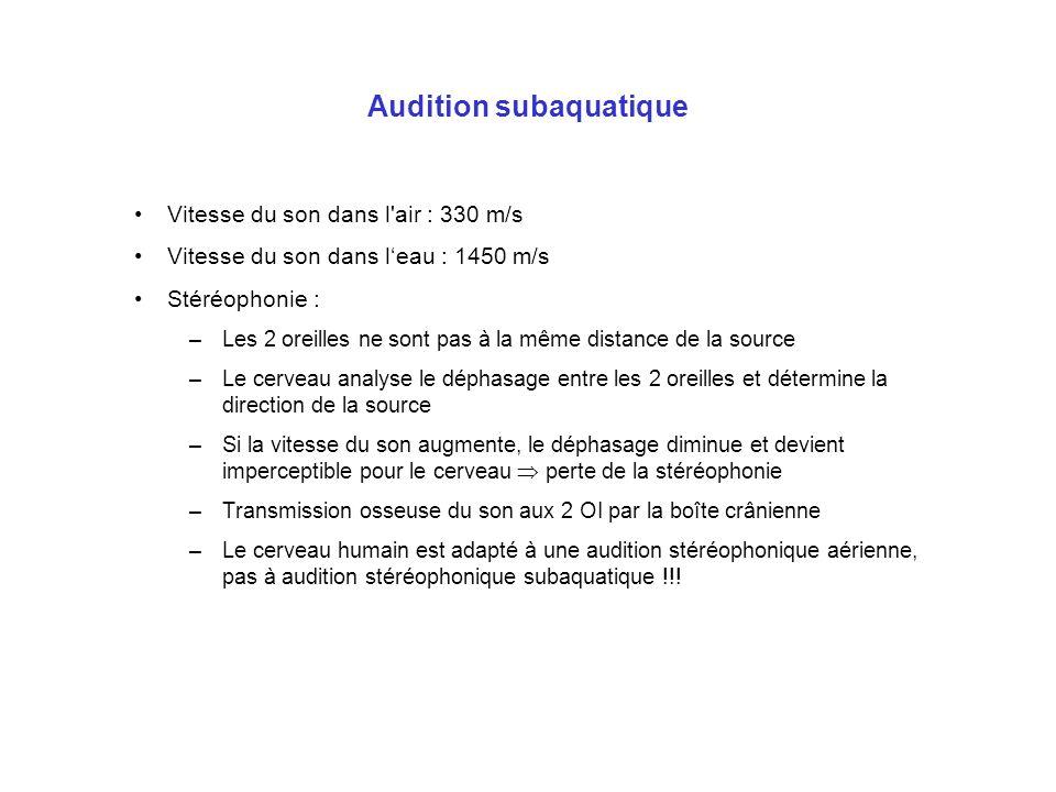 Audition subaquatique Vitesse du son dans l'air : 330 m/s Vitesse du son dans leau : 1450 m/s Stéréophonie : –Les 2 oreilles ne sont pas à la même dis