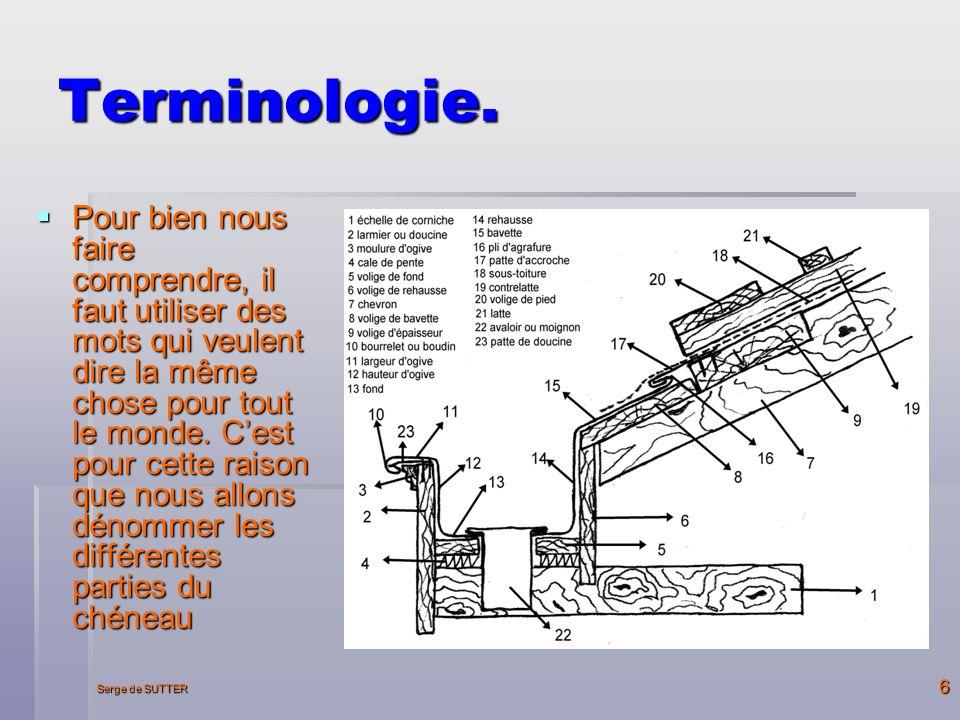 Serge de SUTTER 6 Terminologie.