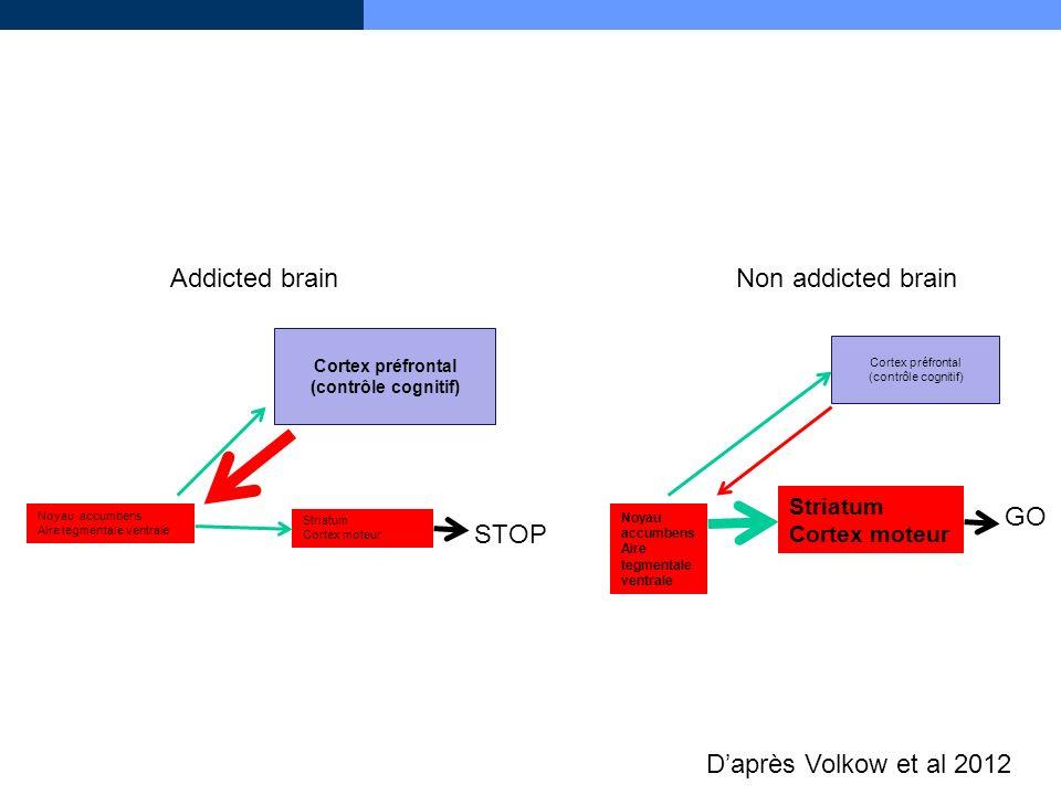 Daprès Volkow et al 2012 Noyau accumbens Aire tegmentale ventrale Striatum Cortex moteur Cortex préfrontal (contrôle cognitif) Cortex orbitofrontal mé
