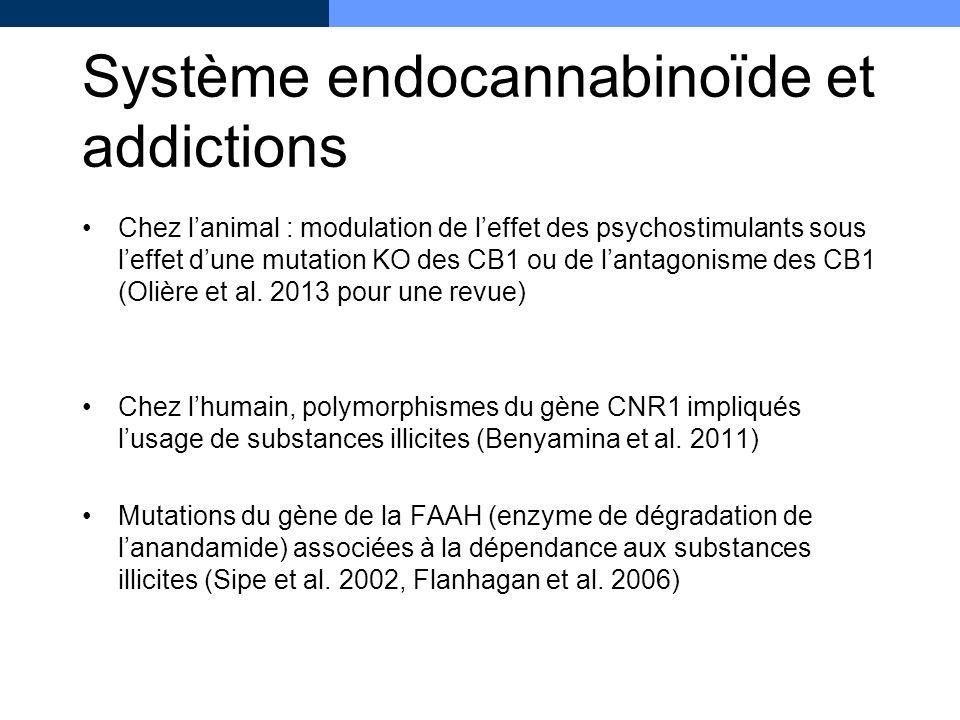 Système endocannabinoïde et addictions Chez lanimal : modulation de leffet des psychostimulants sous leffet dune mutation KO des CB1 ou de lantagonism