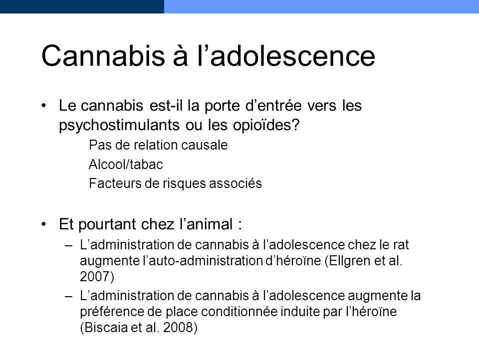 Cannabis à ladolescence Le cannabis est-il la porte dentrée vers les psychostimulants ou les opioïdes? Pas de relation causale Alcool/tabac Facteurs d