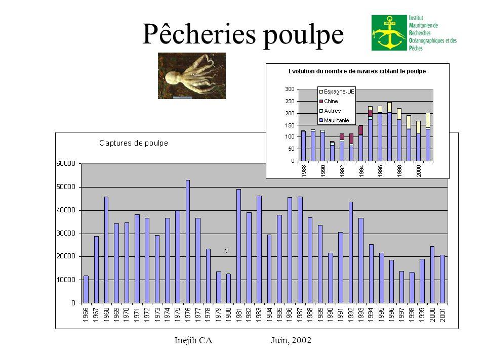 Inejih CA Juin, 2002 Pêcheries poulpe