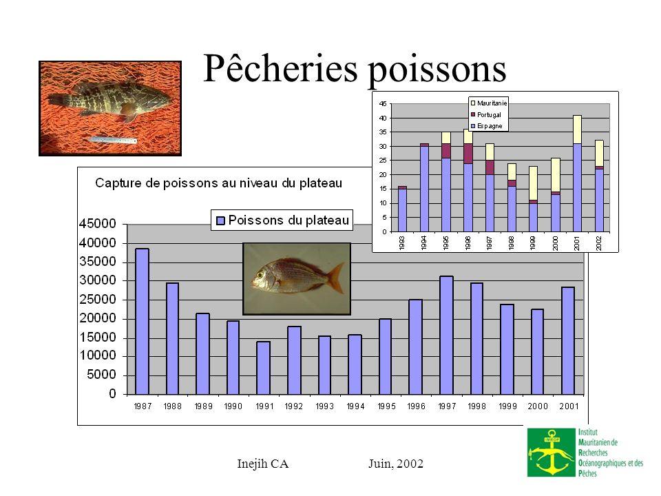 Inejih CA Juin, 2002 Pêcheries Langoustes ??? Détails