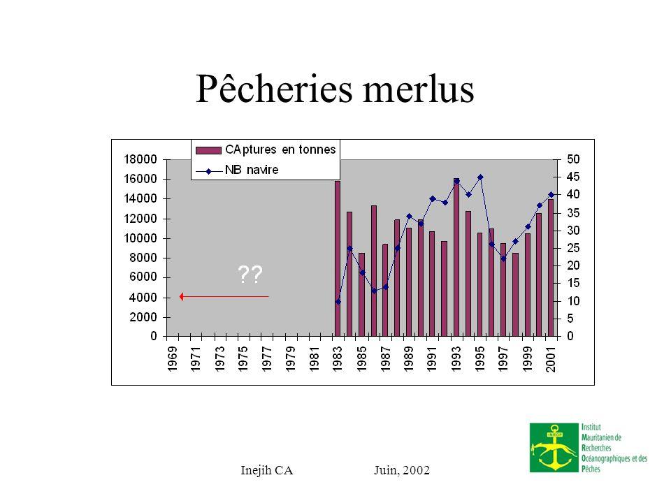 Inejih CA Juin, 2002 Pêcheries merlus
