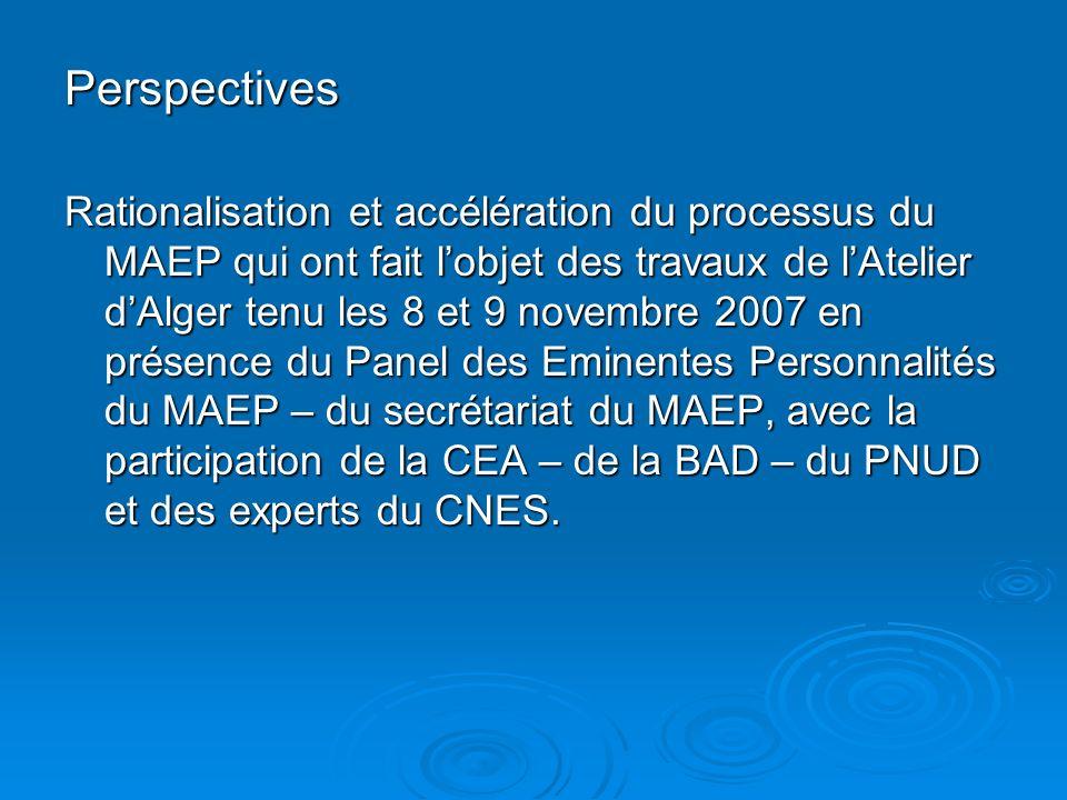 Perspectives Rationalisation et accélération du processus du MAEP qui ont fait lobjet des travaux de lAtelier dAlger tenu les 8 et 9 novembre 2007 en présence du Panel des Eminentes Personnalités du MAEP – du secrétariat du MAEP, avec la participation de la CEA – de la BAD – du PNUD et des experts du CNES.