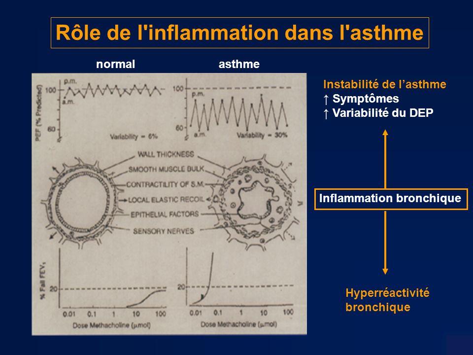 Rôle de l inflammation dans l asthme normalasthme Inflammation bronchique Instabilité de lasthme Symptômes Variabilité du DEP Hyperréactivité bronchique