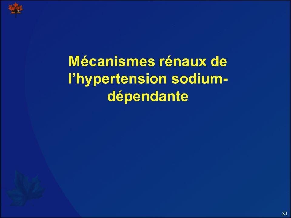 21 Mécanismes rénaux de lhypertension sodium- dépendante