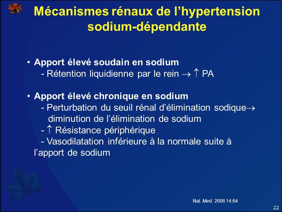 22 Mécanismes rénaux de lhypertension sodium-dépendante Apport élevé soudain en sodium - Rétention liquidienne par le rein PA Apport élevé chronique e