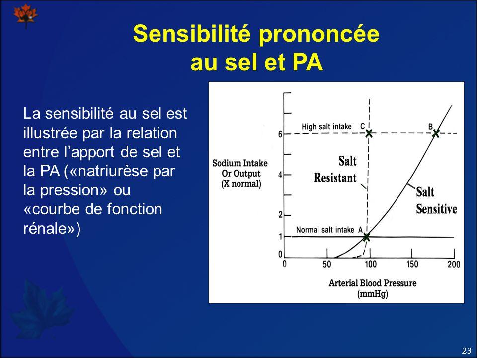 23 Sensibilité prononcée au sel et PA La sensibilité au sel est illustrée par la relation entre lapport de sel et la PA («natriurèse par la pression» ou «courbe de fonction rénale»)