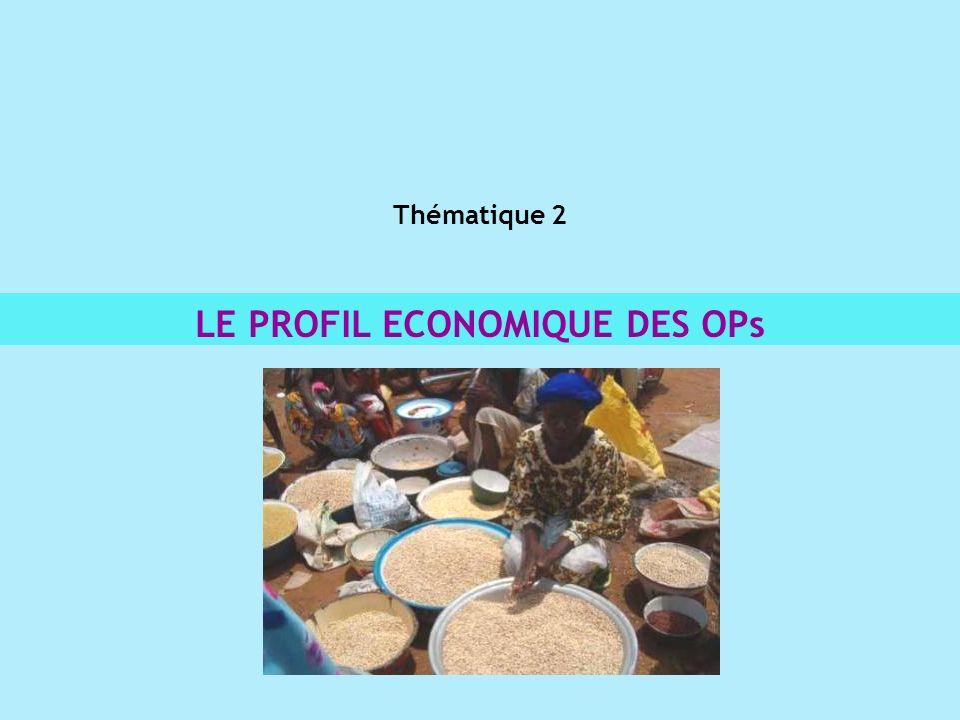 Thématique 2 LE PROFIL ECONOMIQUE DES OPs