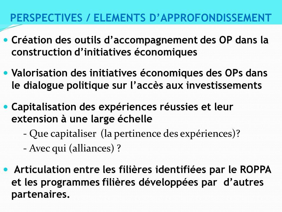 Création des outils daccompagnement des OP dans la construction dinitiatives économiques Valorisation des initiatives économiques des OPs dans le dial