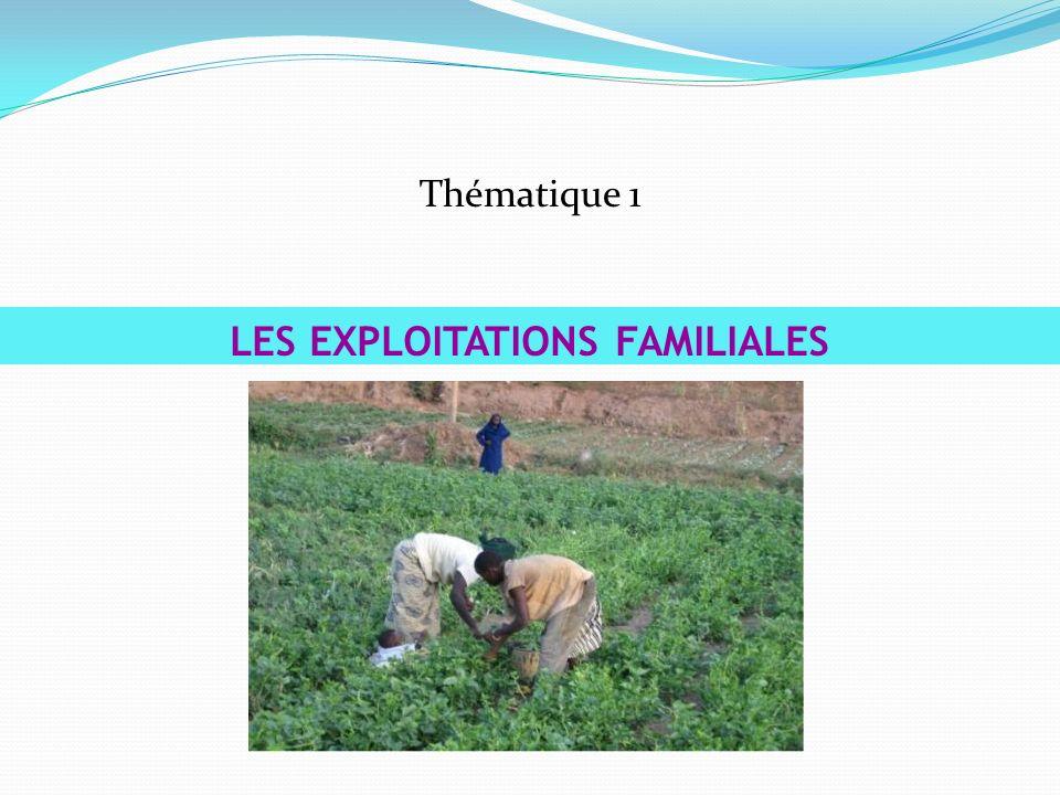 Thématique 1 LES EXPLOITATIONS FAMILIALES