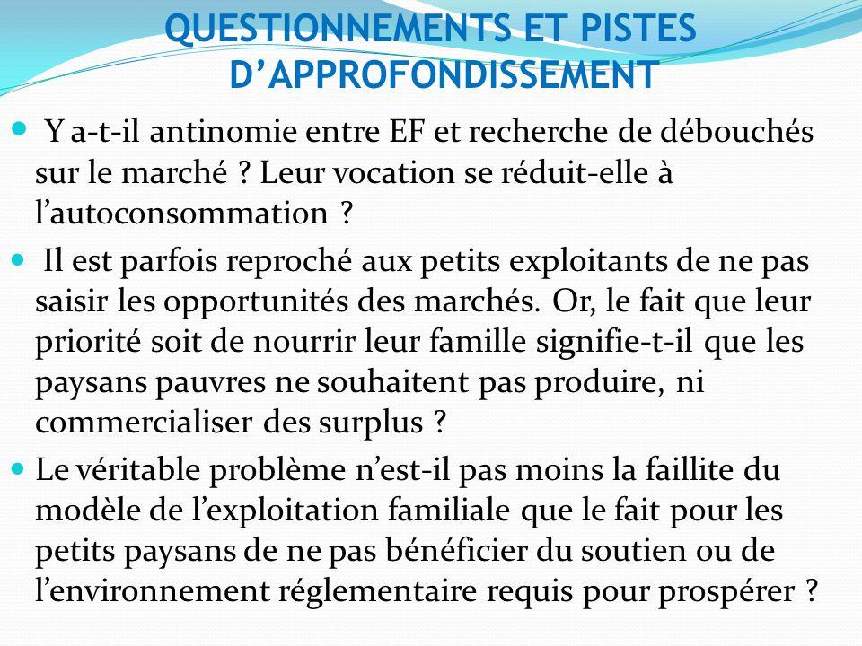 QUESTIONNEMENTS ET PISTES DAPPROFONDISSEMENT Y a-t-il antinomie entre EF et recherche de débouchés sur le marché .