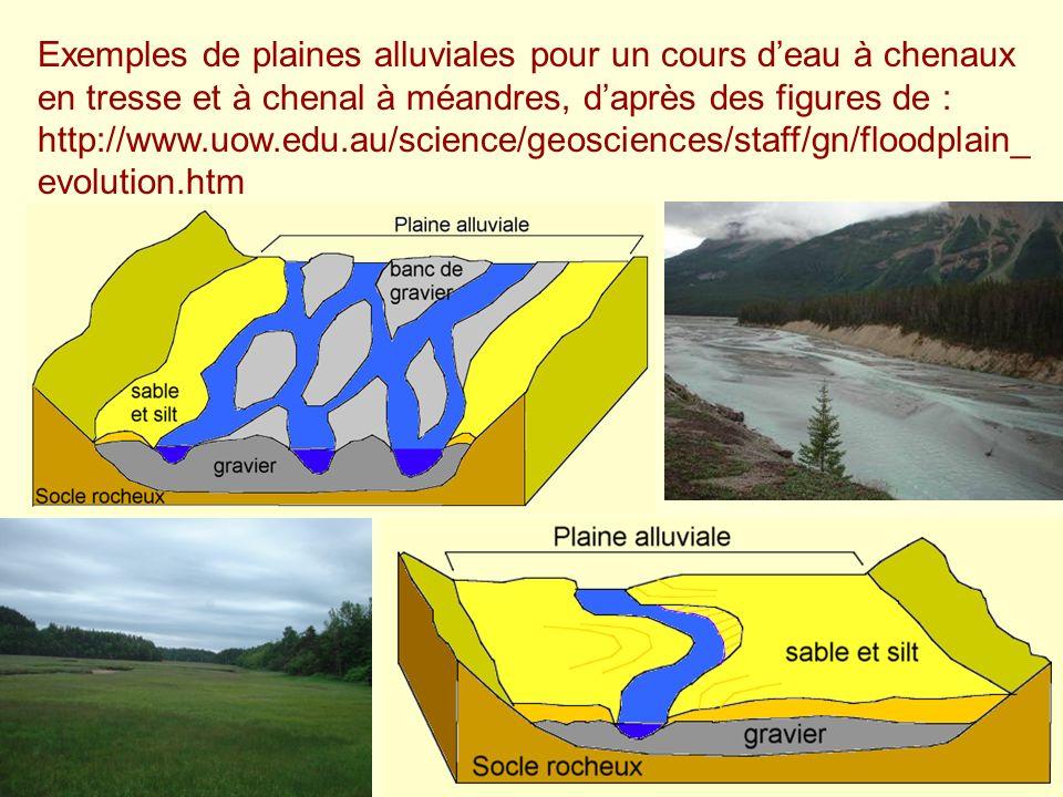Exemples de plaines alluviales pour un cours deau à chenaux en tresse et à chenal à méandres, daprès des figures de : http://www.uow.edu.au/science/ge