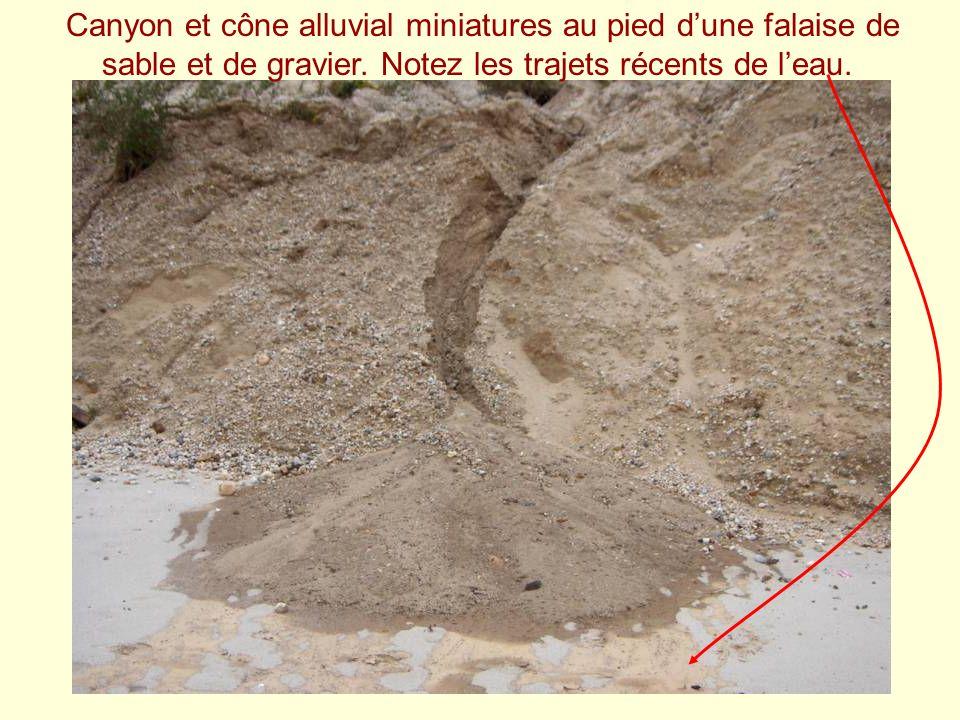 Canyon et cône alluvial miniatures au pied dune falaise de sable et de gravier. Notez les trajets récents de leau.