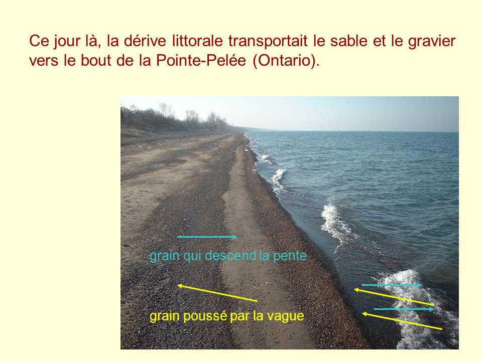Ce jour là, la dérive littorale transportait le sable et le gravier vers le bout de la Pointe-Pelée (Ontario). grain poussé par la vague grain qui des