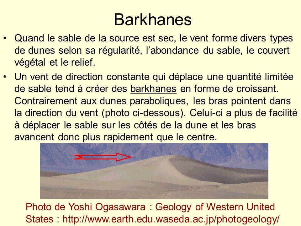 Barkhanes Quand le sable de la source est sec, le vent forme divers types de dunes selon sa régularité, labondance du sable, le couvert végétal et le