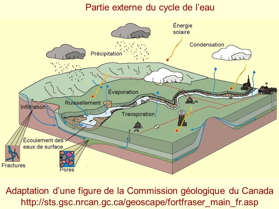 Adaptation dune figure de la Commission géologique du Canada http://sts.gsc.nrcan.gc.ca/geoscape/fortfraser_main_fr.asp Partie externe du cycle de lea
