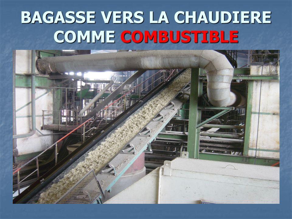 BAGASSE VERS LA CHAUDIERE COMME COMBUSTIBLE