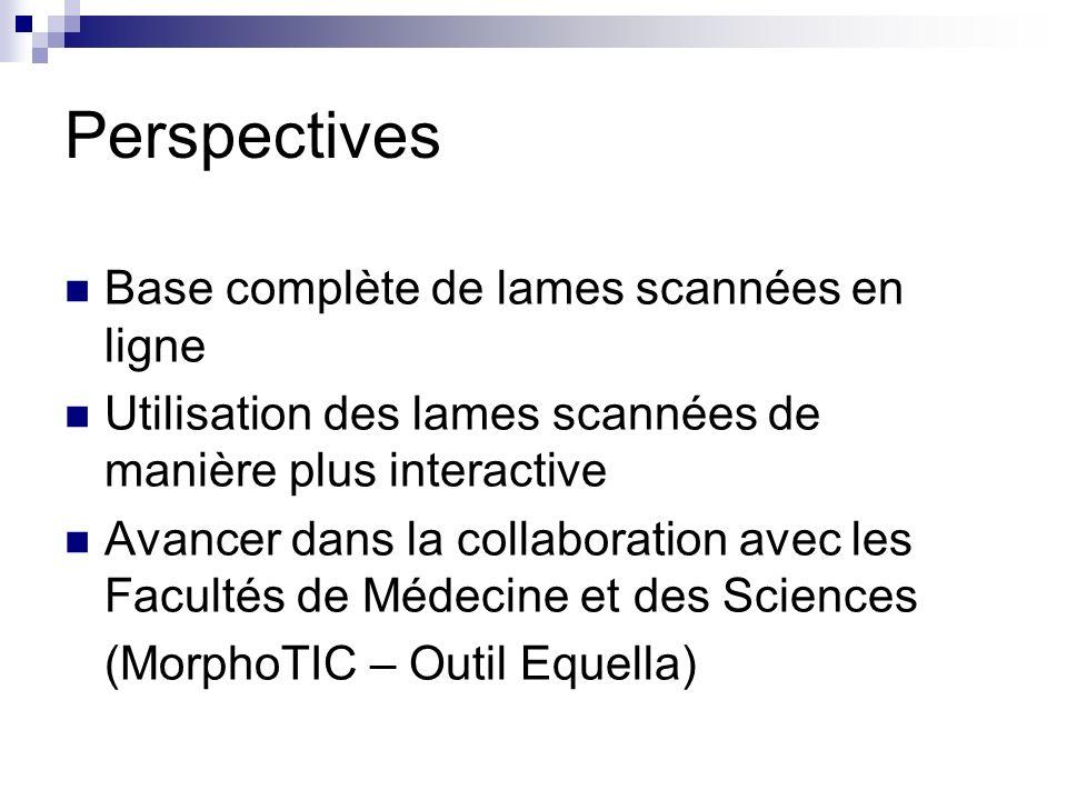 Perspectives Base complète de lames scannées en ligne Utilisation des lames scannées de manière plus interactive Avancer dans la collaboration avec les Facultés de Médecine et des Sciences (MorphoTIC – Outil Equella)