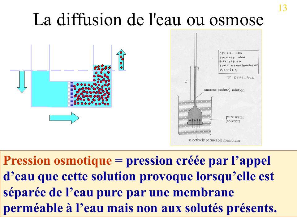 Pression osmotique = pression créée par lappel deau que cette solution provoque lorsquelle est séparée de leau pure par une membrane perméable à leau mais non aux solutés présents.