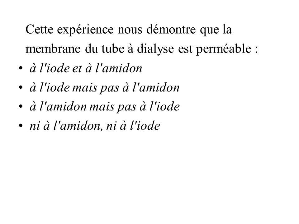Cette expérience nous démontre que la membrane du tube à dialyse est perméable : à l iode et à l amidon à l iode mais pas à l amidon à l amidon mais pas à l iode ni à l amidon, ni à l iode