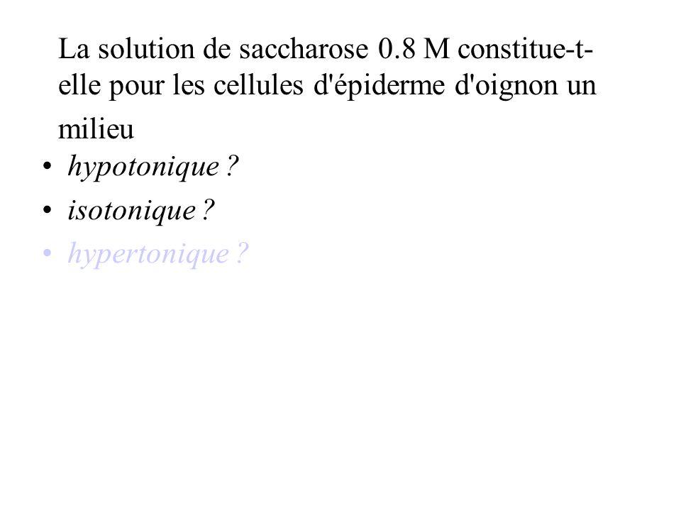 La solution de saccharose 0.8 M constitue-t- elle pour les cellules d épiderme d oignon un milieu hypotonique .