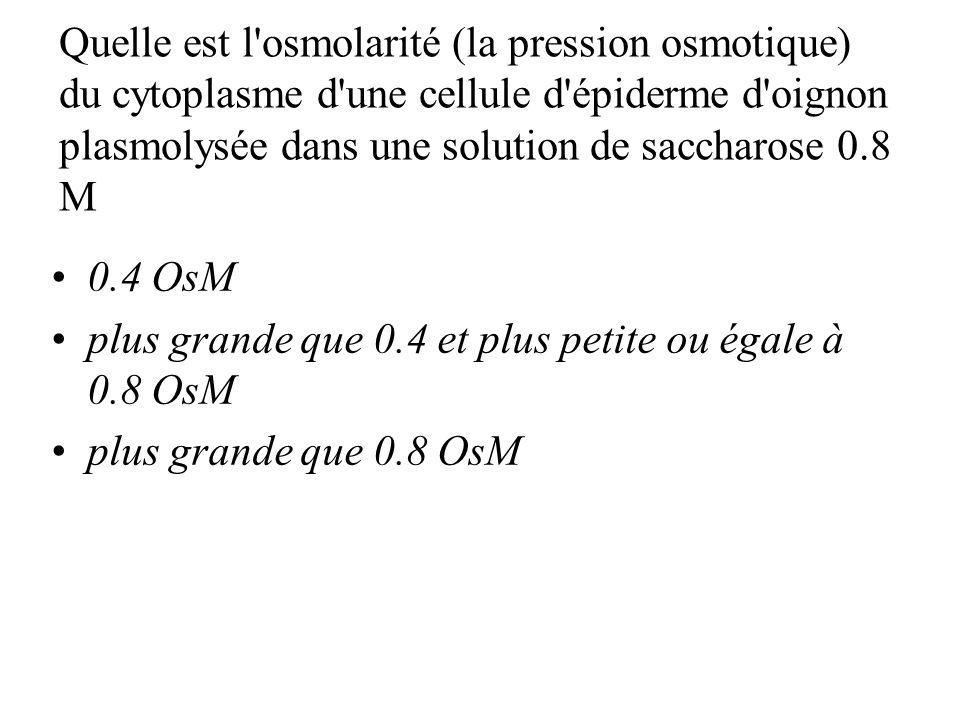 Quelle est l osmolarité (la pression osmotique) du cytoplasme d une cellule d épiderme d oignon plasmolysée dans une solution de saccharose 0.8 M 0.4 OsM plus grande que 0.4 et plus petite ou égale à 0.8 OsM plus grande que 0.8 OsM