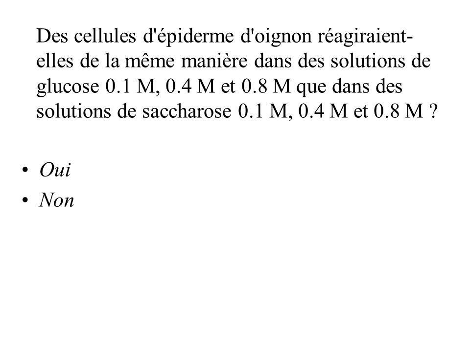 Des cellules d épiderme d oignon réagiraient- elles de la même manière dans des solutions de glucose 0.1 M, 0.4 M et 0.8 M que dans des solutions de saccharose 0.1 M, 0.4 M et 0.8 M .