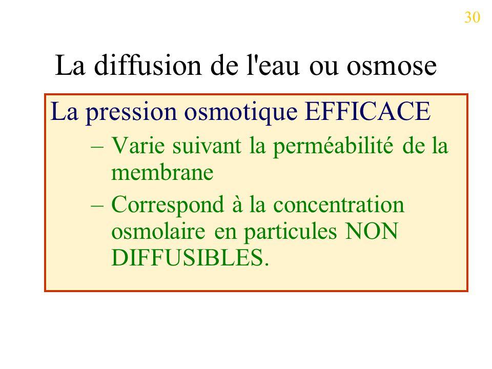 La pression osmotique EFFICACE –Varie suivant la perméabilité de la membrane –Correspond à la concentration osmolaire en particules NON DIFFUSIBLES.