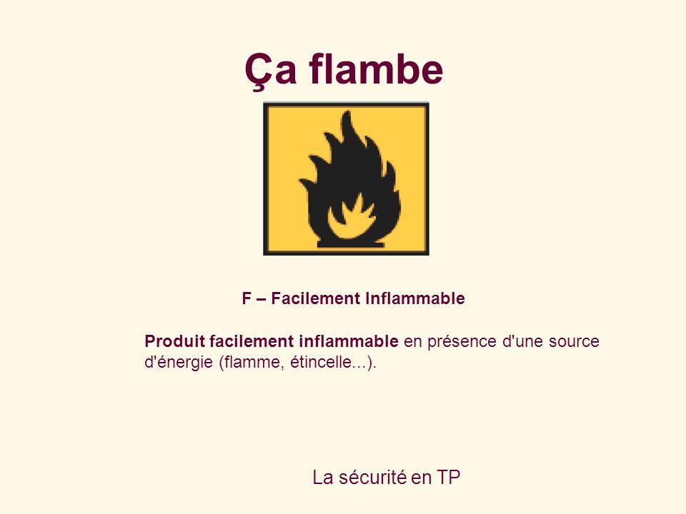 La sécurité en TP F – Facilement Inflammable Produit facilement inflammable en présence d'une source d'énergie (flamme, étincelle...). Ça flambe
