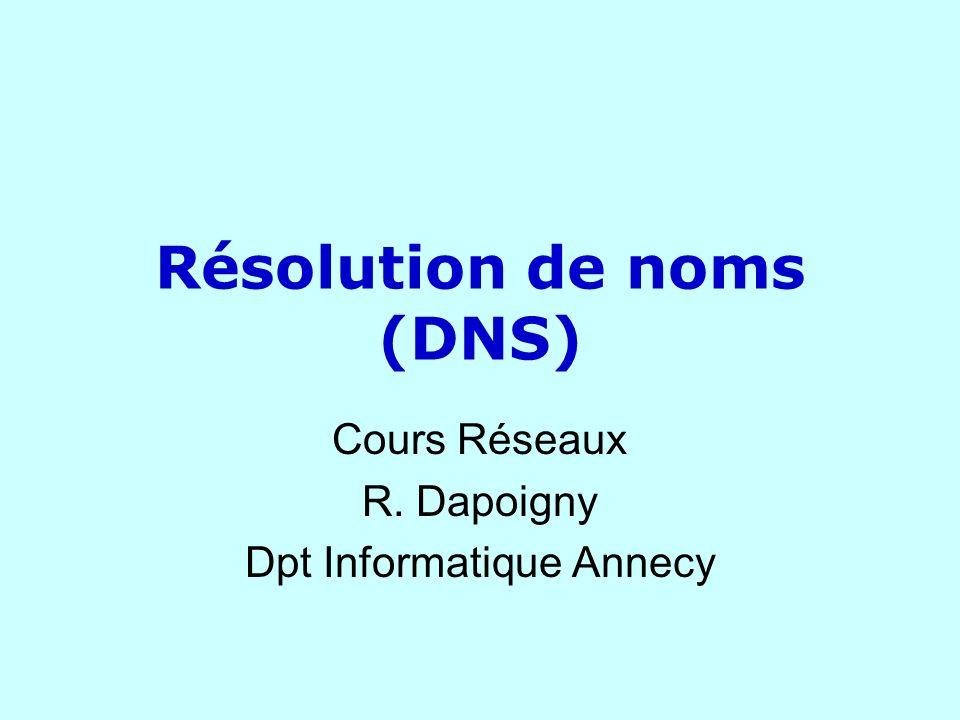 DNS Couche application identification par noms Clarté de lidentification littérale différencier les noms locaux arborescence Notion de domaine Chaque site identifié par un nom de domaine Chaque domaine contient des sous-domaines Représentation par chaînes pointées