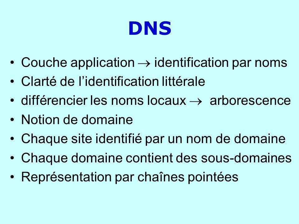 DNS Couche application identification par noms Clarté de lidentification littérale différencier les noms locaux arborescence Notion de domaine Chaque