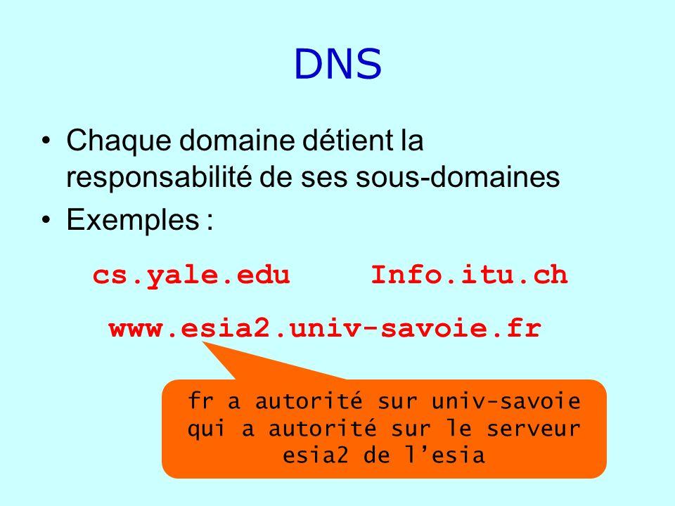 DNS Chaque domaine détient la responsabilité de ses sous-domaines Exemples : cs.yale.edu www.esia2.univ-savoie.fr Info.itu.ch fr a autorité sur univ-s