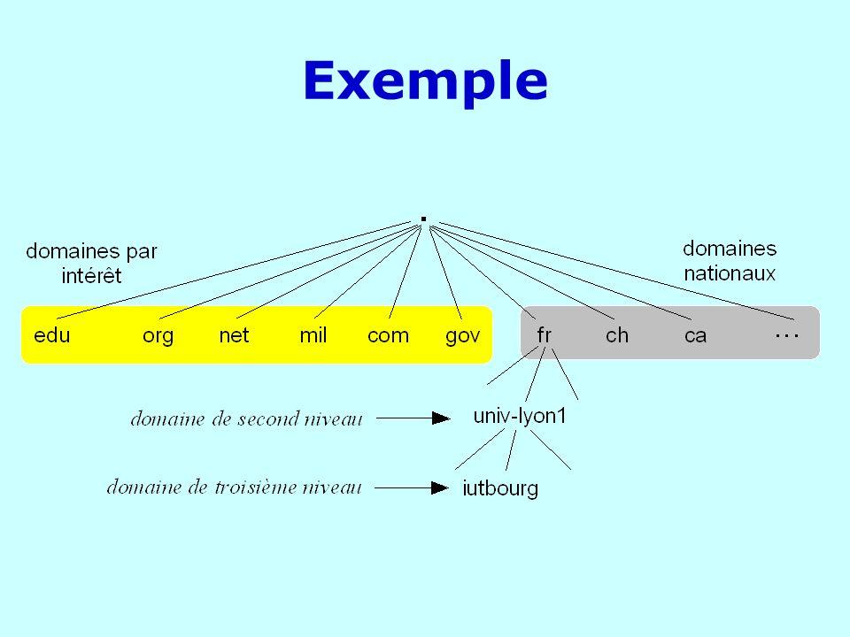 Base de données distribuée au niveau mondial : INTERNic (AfNic) pour enregistrer son nom de domaineAfNic fr inria centralweb m1 Domaine complet Domaine fr Domaine centralweb noeud m1.centralweb.fr Des noeuds peuvent avoir les mêmes noms dans des domaines différents : ns.centralweb.fr et ns.renault.fr Un domaine est un sous-arbre de lespace nom de domaine