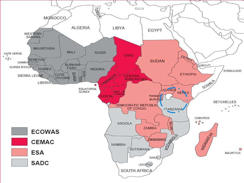17 L Afrique Orientale (de lEst) mise sur un accord sur laccès au marché de marchandises et sur le développement: deux sous- ensembles émergent avec une proposition commune daccès au marché, offre tarifaire compatible aux règles de lOMC l un constitué de la Communauté de l Afrique de l Est (EAC) composée de cinq Etats (Kenya, Ouganda, Tanzanie, Burundi et Rwanda) réunis dans une union douanière, Vitesse de croisière avant les politiques propres de EAC, Comesa, et trouble de ESA, SADC l autre regroupant les pays de l Océan Indien (comores, Madagascar, Maurice et Seychelles) dans le cadre de la Commission de l Océan Indien (COI).