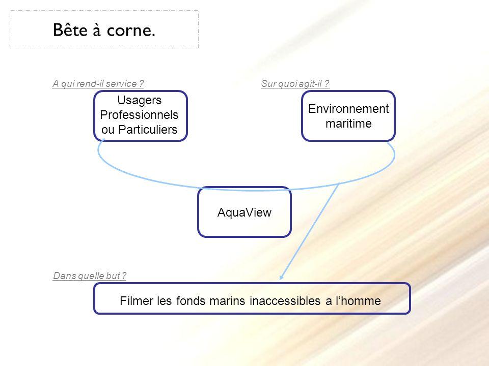 Diagramme pieuvre.